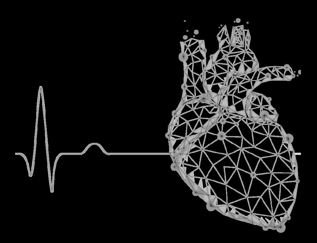 24 Hour ECG Monitoring